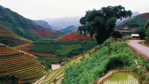 Ruộng bậc thang Mù Căng Chải - Yên Bái